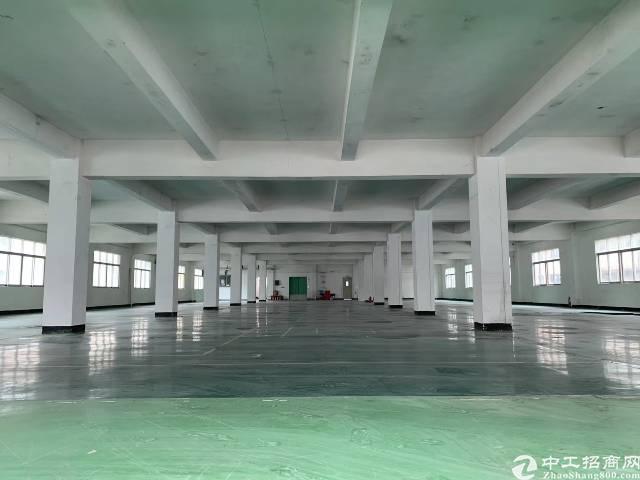 沙井新桥独院厂房3350平方实际面积出租-图2