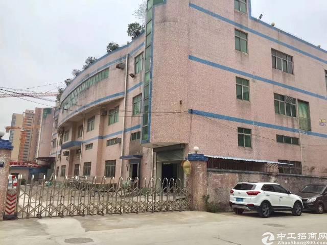 沙井新桥独院厂房3350平方实际面积出租