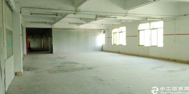 水口镇新出楼上精品标准厂房500平方