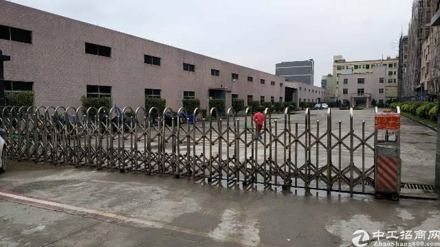 园洲3500平方独院单一层厂房出租