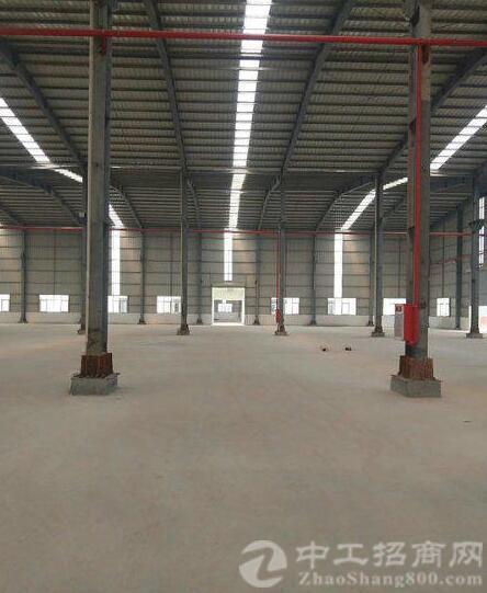 园洲镇全新钢结构工业区厂房8000平方,带牛角-图3