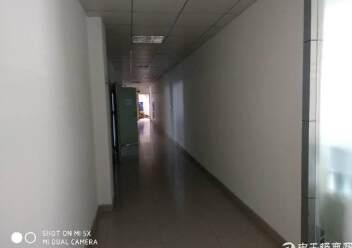 福永怀德有精装修厂房出租1700㎡图片6