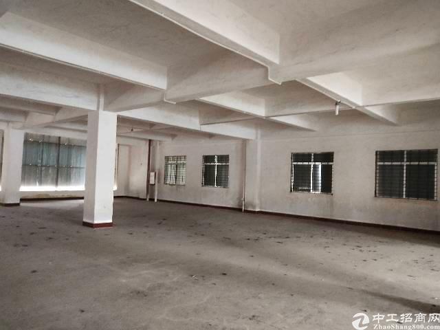 广州新塘标准一楼厂房仓库招租可分租可做小污染行业可办环评