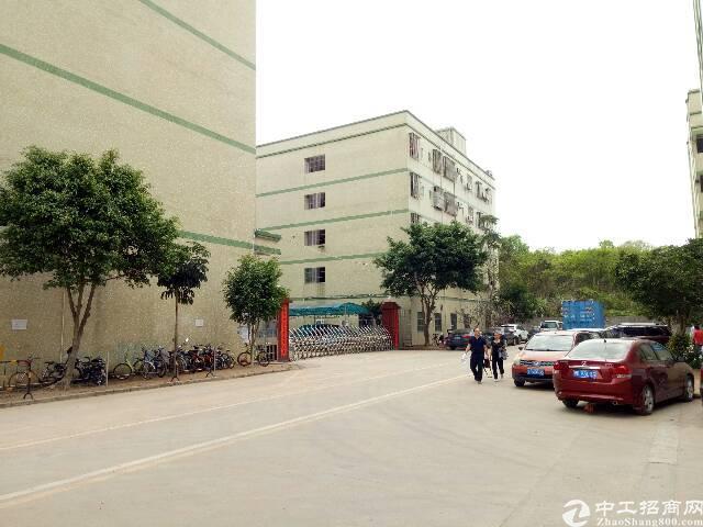 坑梓龙田工业园分租一二楼厂房2000平米