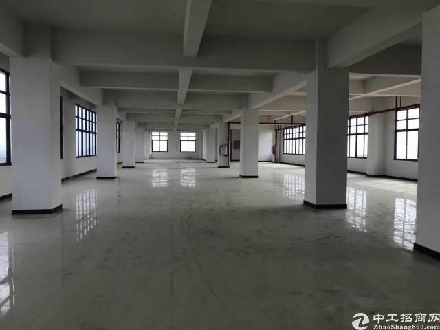 大朗原房东最新厂房总面积7400平米
