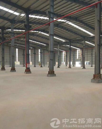 园洲镇全新钢结构工业区厂房8000平方,带牛角-图2