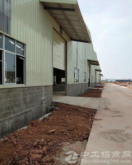 园洲镇全新钢结构工业区厂房8000平方,带牛角
