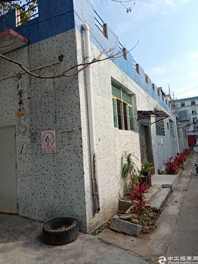 龙岗横岗厂房龙岗大道附近700平精装修出租,业主厂房招租