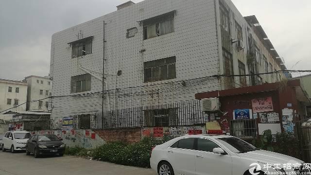 仲恺2400平方标准厂房,卖500万。