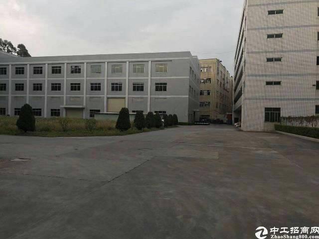 龙华镇新出30000方独院厂房租12