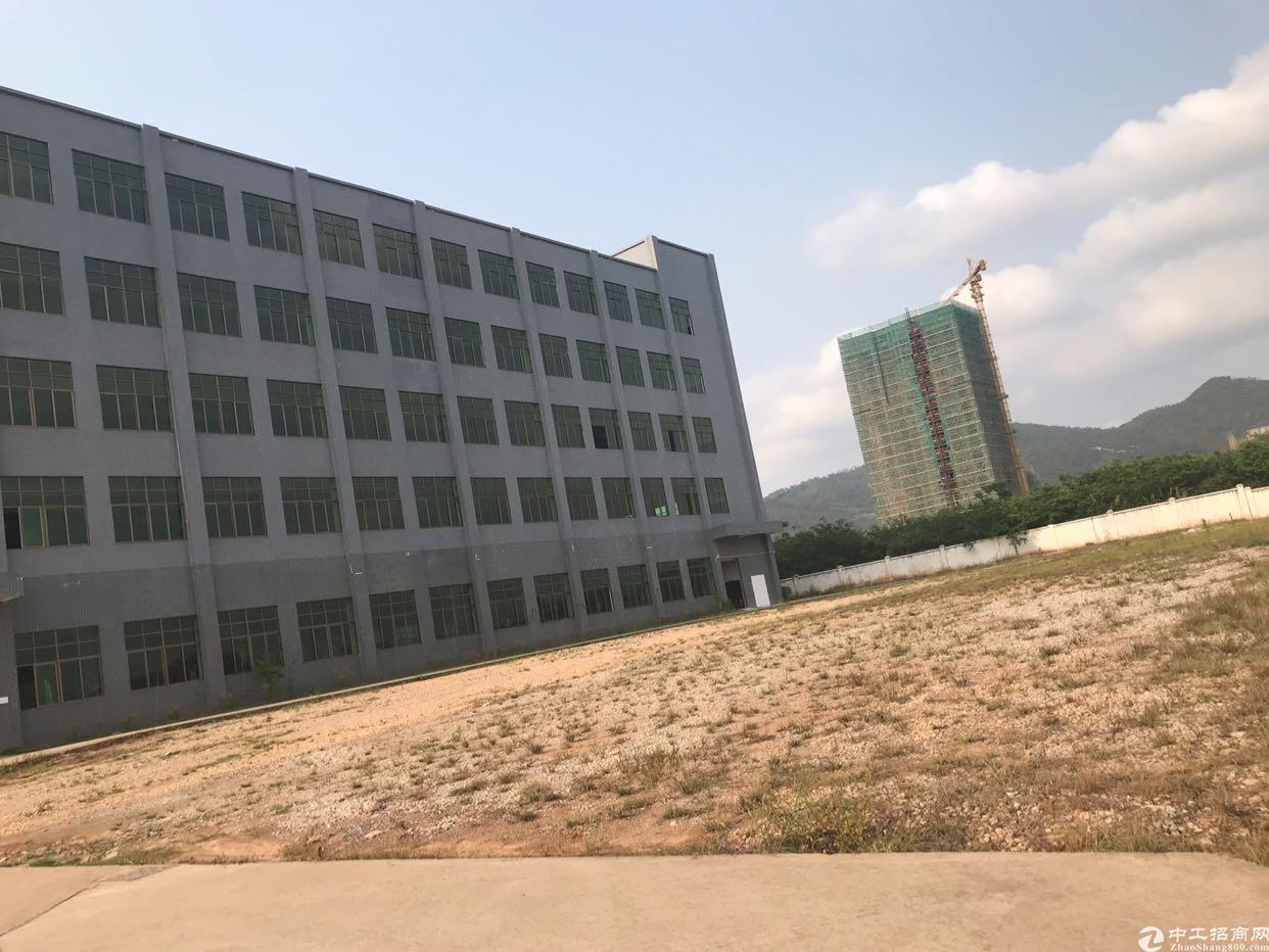 紫金临江工业园区独院厂房出租