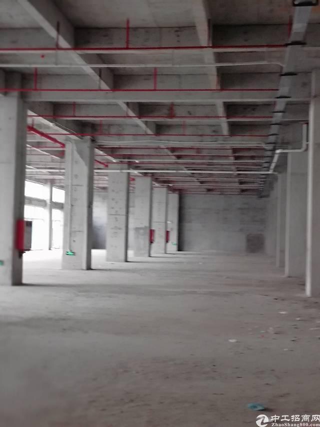 东莞常平小面积带红本厂房出售,让小微企业都能有个家
