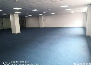 天河区棠下村花园式简装办公室460平出租图片4