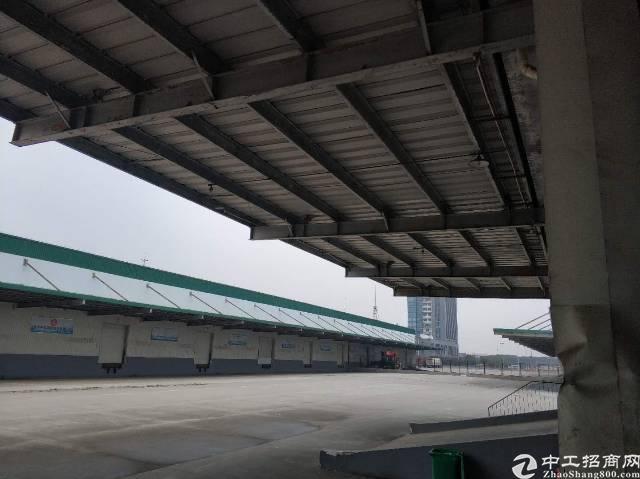 武汉东西湖高标高台物流仓库盛大招商
