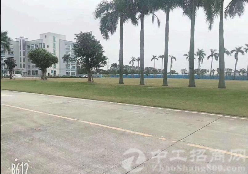 东莞洪梅镇中心25000平米独门独院空地大