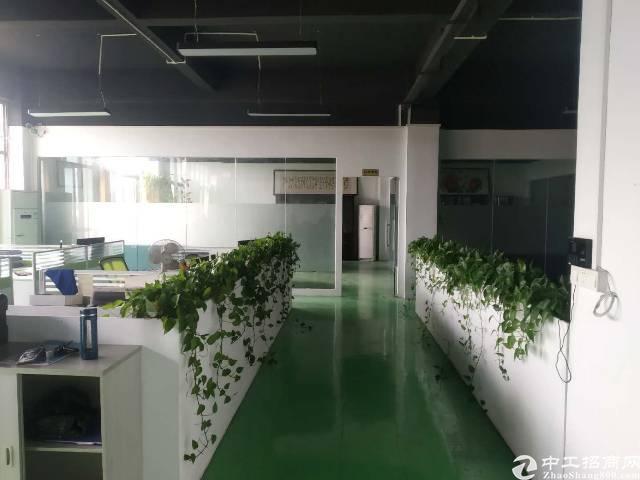 道滘精品工业区办公室精装修免费送。可以带300平仓库