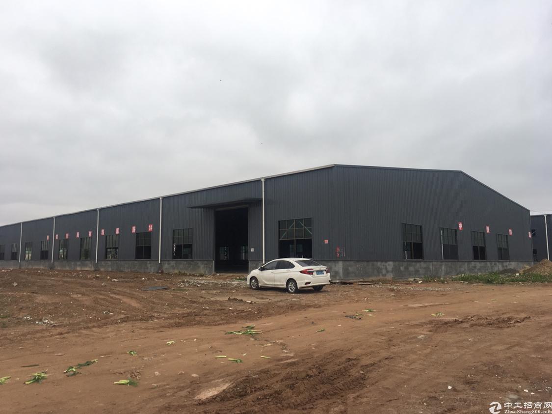 惠阳全新钢构厂房,滴水8米,超大空地