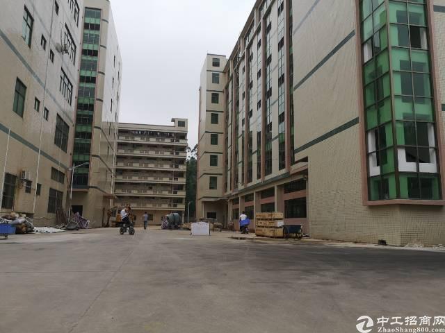 凤岗原房东单层2000平米全新厂房出租