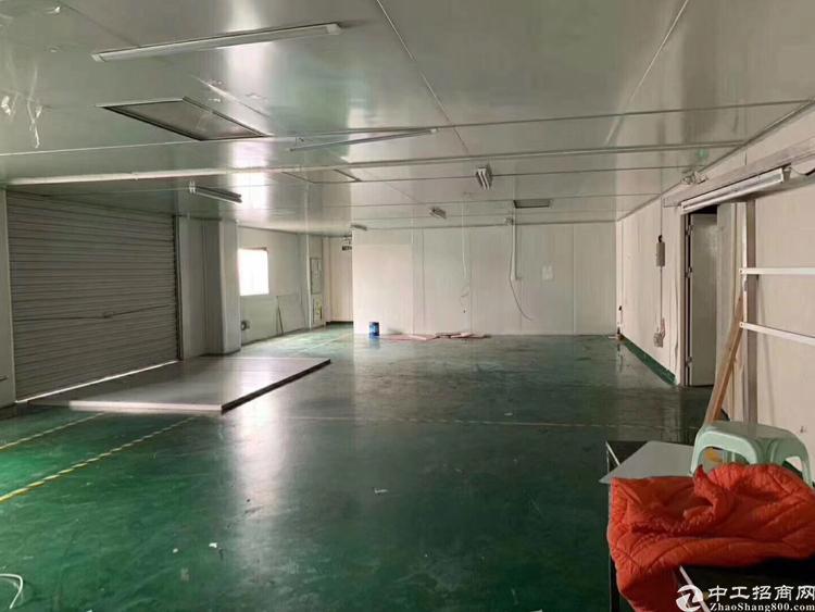 福永凤凰新出楼上1100平方,带装修,无转让费