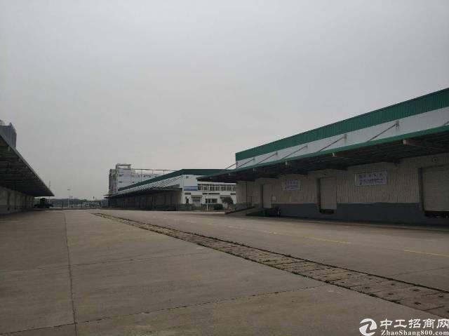 武汉高新区国际标准高台库特惠招商-图4