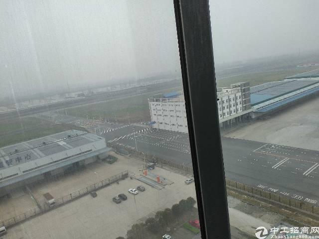 武汉高新区国际标准高台库特惠招商-图3