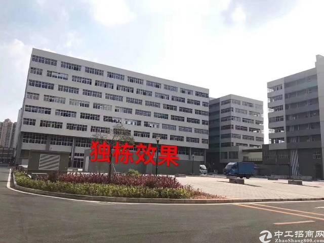 东莞常平国土证,房产证,双证合一厂房出售,面积300-300