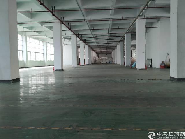 观澜桂花3万平厂房仓库100起出租转租