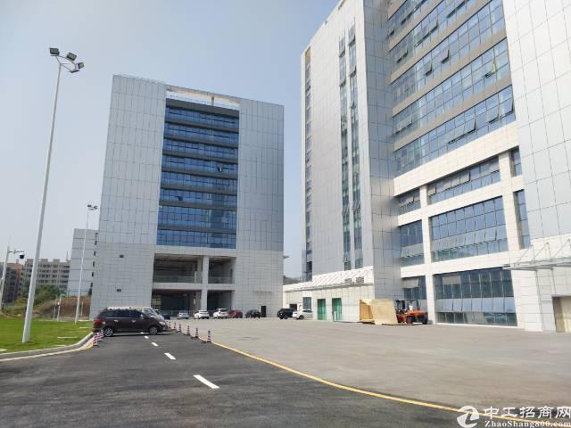石岩双高速出口厂房、仓库招租6600平方,单层3300平方可