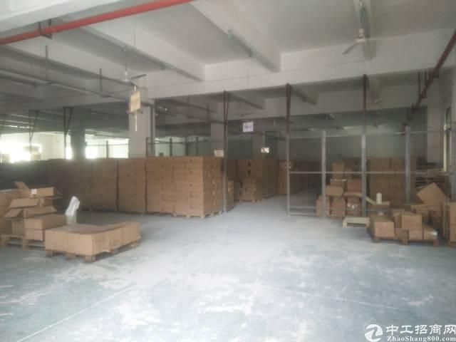 广州黄埔标准厂房出租可生产可坐仓库