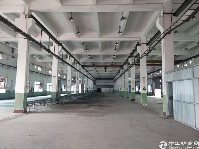 西丽大学城厂房、仓库招租3100平方大小分租地铁口300米,