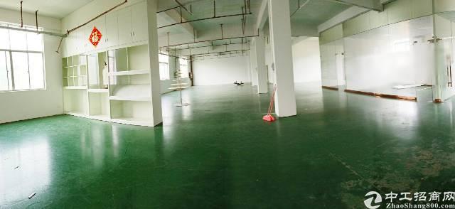 坪山碧岭原房东、独院厂房3楼800平,带精装修办公室