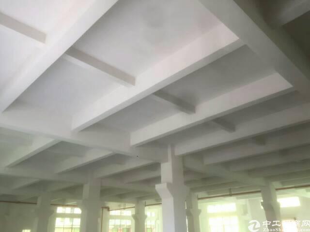 长安镇原房东全新厂房租