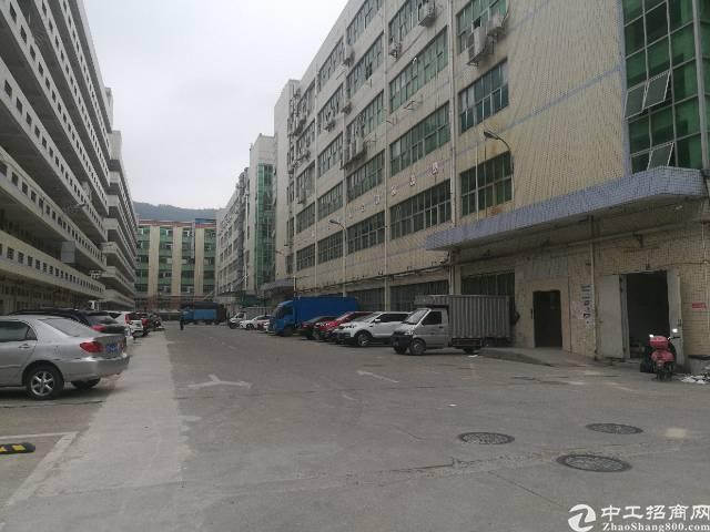 西乡九围楼上2300平米大小厂房出租200平米起