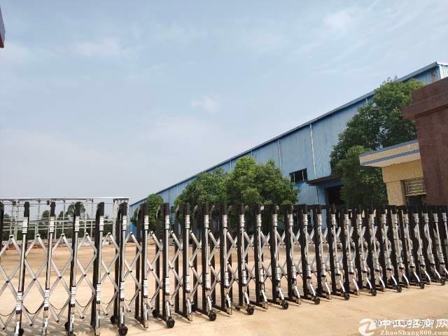 博罗杨村独院单一层12米钢构厂房14500平方