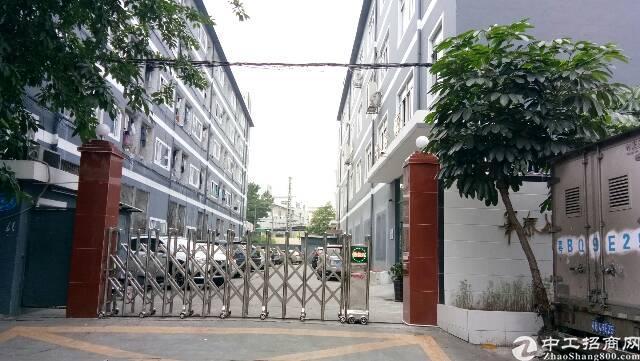龙华清湖新出独院厂房3楼700平小面积厂房出租
