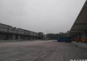 江门最标准的物流仓库出租丙二类图片2
