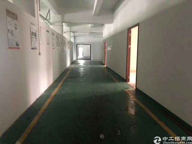 横岗大康新岀楼上1000平方米出租精装修全新地坪漆20每平-图3
