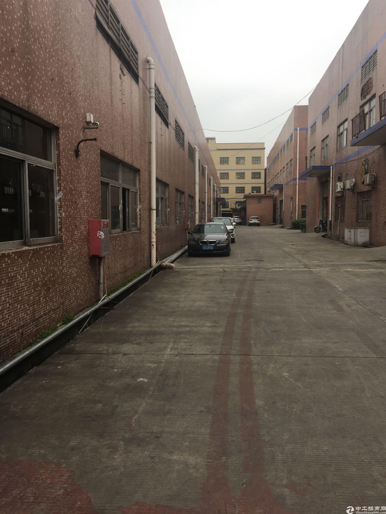 大岭山新出单一层3300平可做生产可做仓库