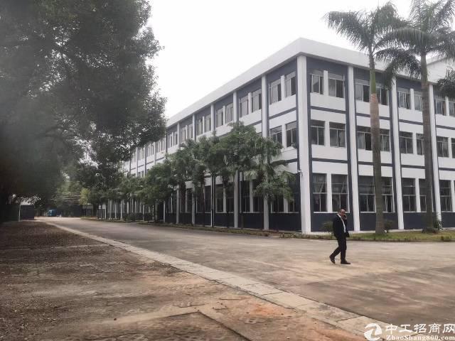 福永凤凰107国道边独院40000平米厂房招租