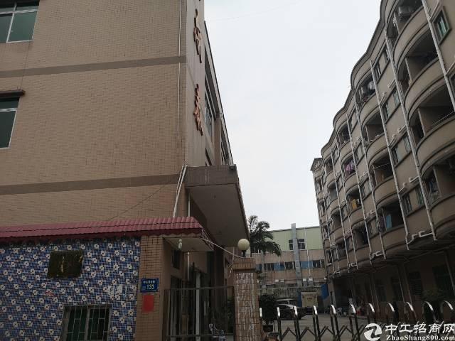 临近深圳片区,钢构厂房出售,性质村委合同