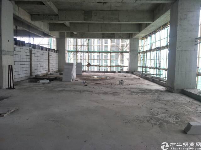 仲恺高新区陈江国有证厂房出售 占地面积:42566m-图2