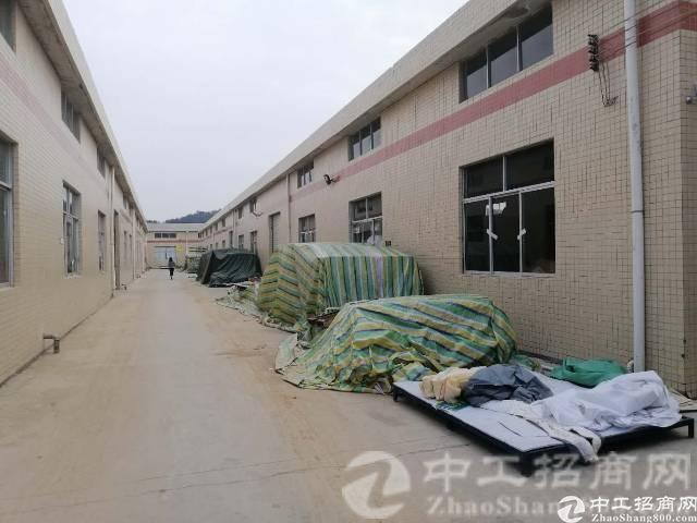 惠州惠阳区主干道边独院钢构厂房7000平米出租可分租-图2