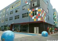 石岩800平方豪华装修写字楼出租免转让费