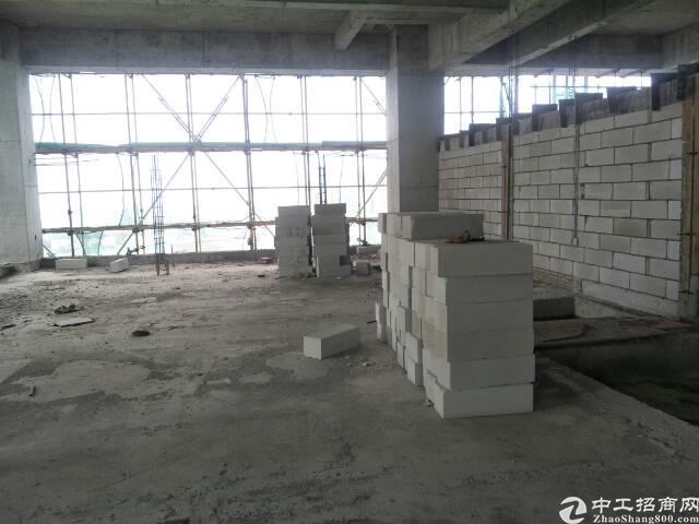 仲恺高新区陈江国有证厂房出售 占地面积:42566m-图3