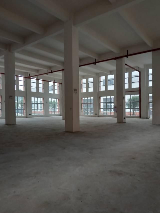 九龙坡区标准仓房层高9米交通便利行业宽泛-图7