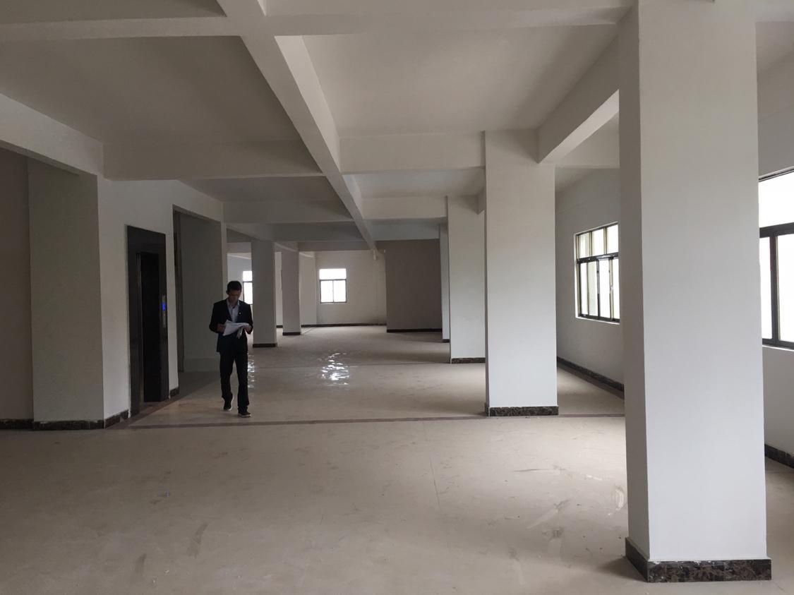 全新独栋厂房,适合做办公室,位于主干道旁边-图2