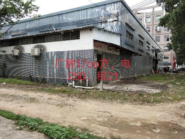 工业区砖墙到顶单一层厂房出租