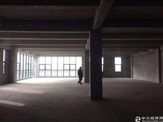 两江新区标准厂房出租招商多种面积多种层高可选-图2