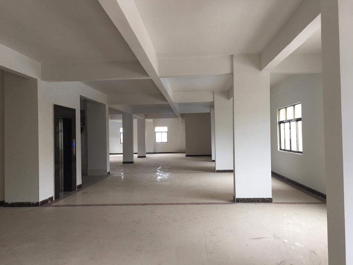 全新独栋厂房,适合做办公室,位于主干道旁边-图3