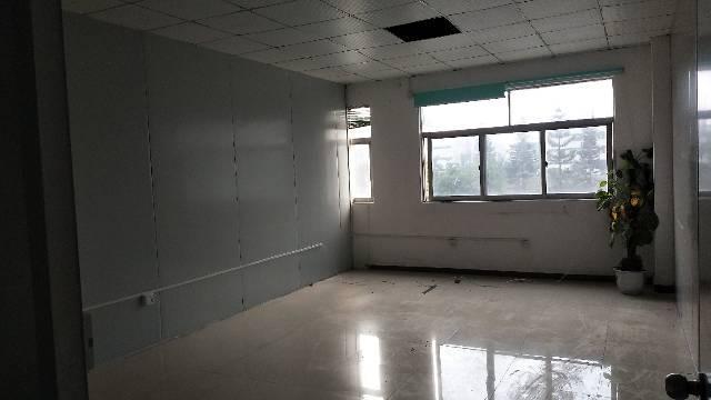 标准厂房,豪华装修,价格实惠,机会少有!